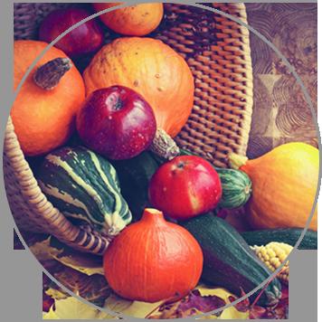 Herbstlich Bunt, saisonales Catering