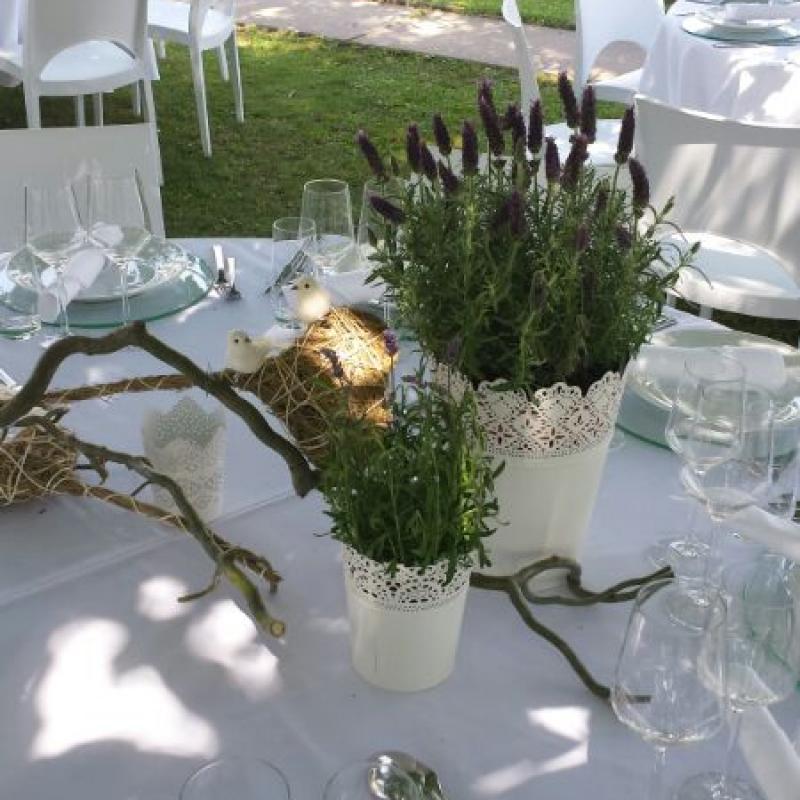 duftende Kräuter auf dem Geburtstagstisch - unser Privatcatering  | Messerich Catering