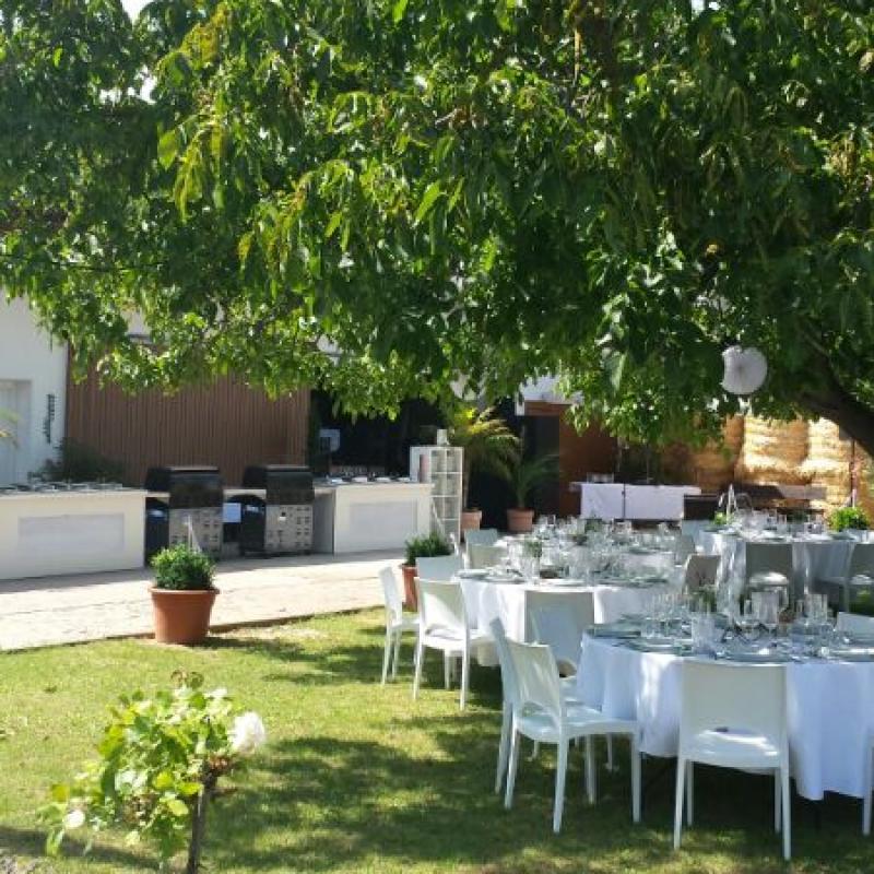 Feiern unterm großen Baum | Messerich Catering